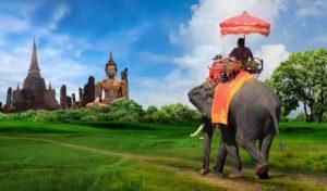 Staff Travel Voyage Special Offer
